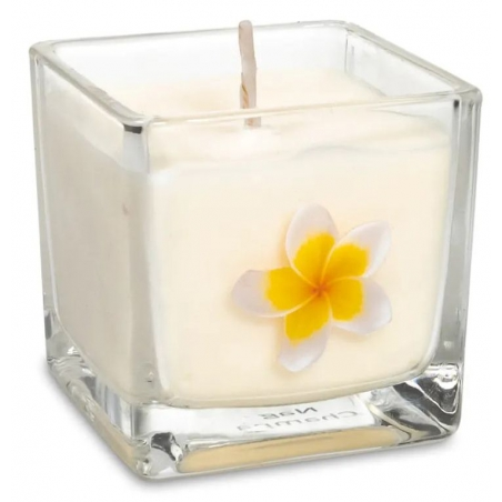 Scented candle Nag Champa (ecological)