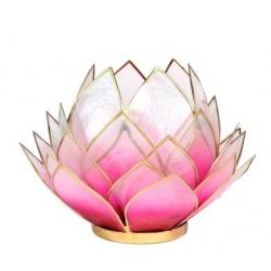 Lotus Kaarsenbrander groot - Roze