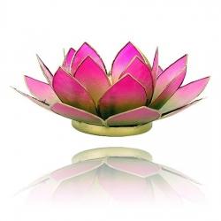 Lotus Kaarsenbrander - groen/roze 2-kleurig