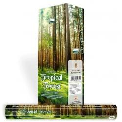 Darshan Tropical Forest wierook (per doos)