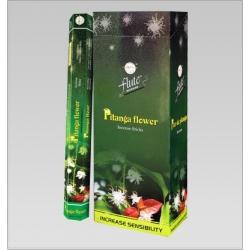 6 pakjes Pitanga Flower wierook (Flute)
