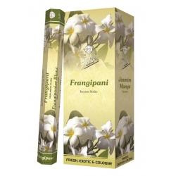 6 pakjes Frangipani wierook (Flute)