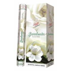 6 pakjes Gardenia wierook (Flute)
