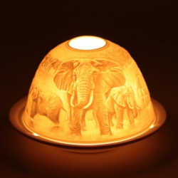 Atmospheric lighting porcelain Elephants